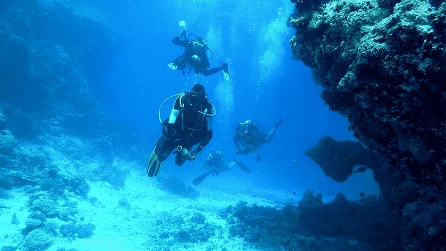 Unterwasser_Foto